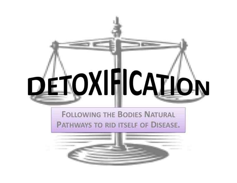 Tampa Detox Diet | Detoxification St. Petersburg